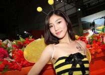 大阪オートメッセの日野ブースのミツバチギャルがカワイイ!